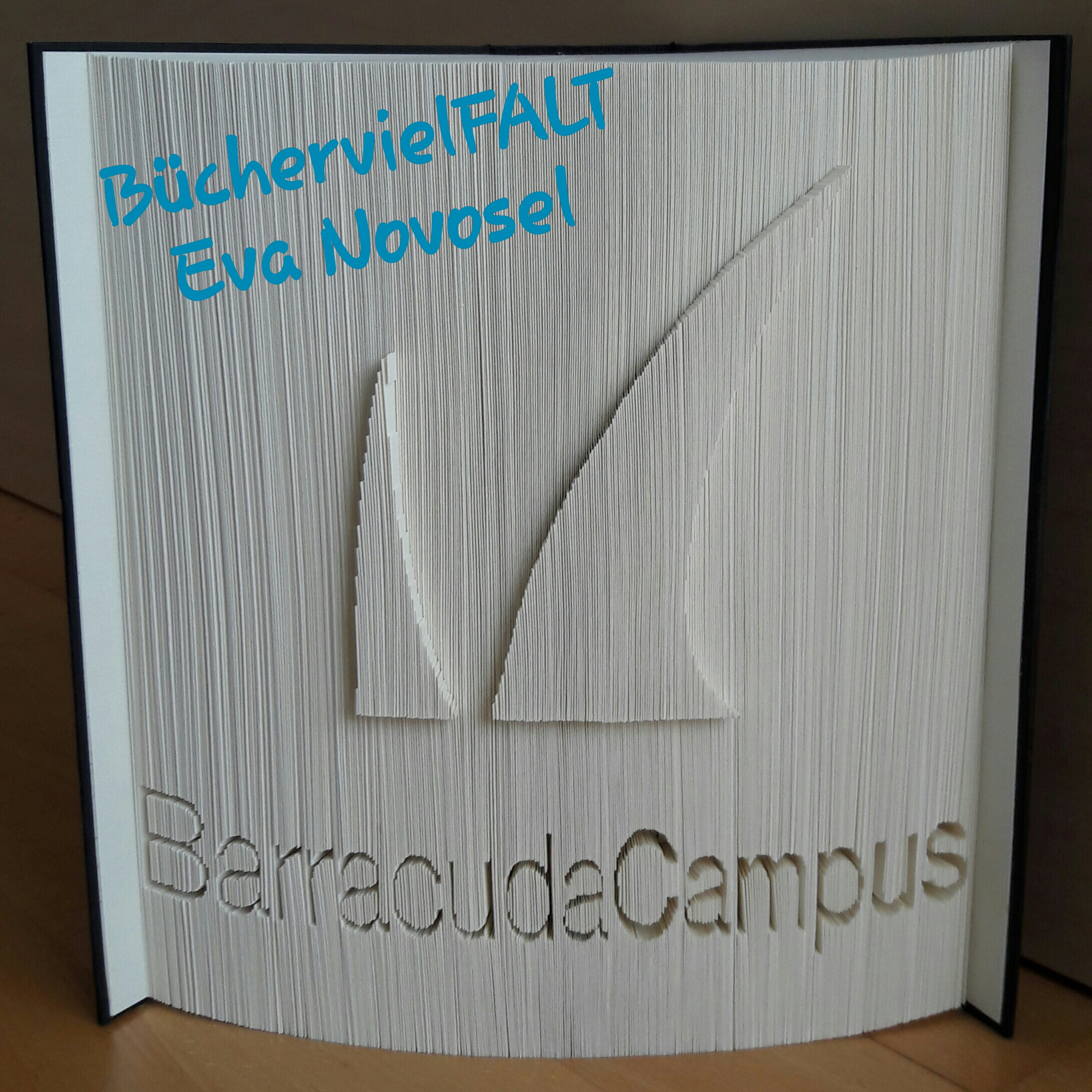 gefaltetes Buch Barracuda Campus
