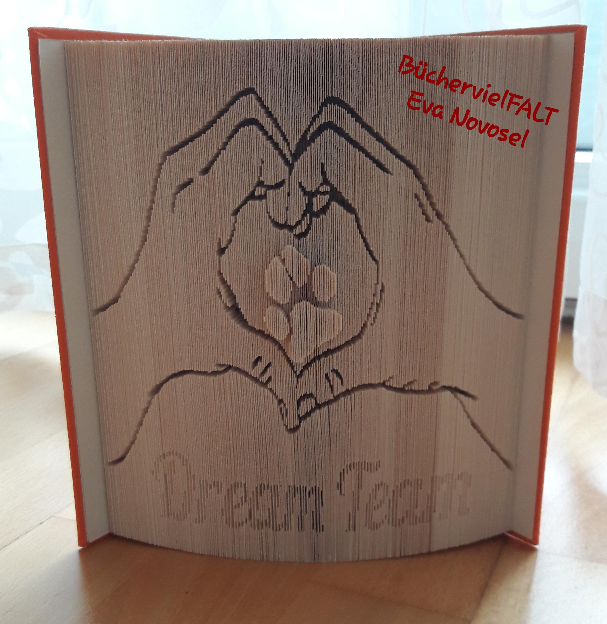 DreamTeam - Hände bilden Herz mit Hundepfote